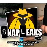 SnapLeaks Deal