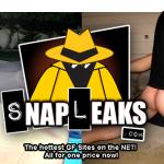 SnapLeaks Deal